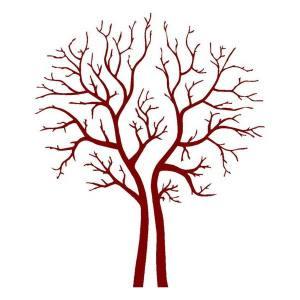 arbol-sin-hojas