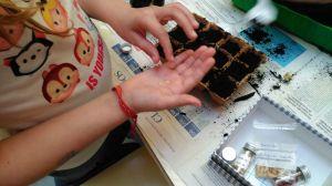 Plantamos con cuidado las semillas